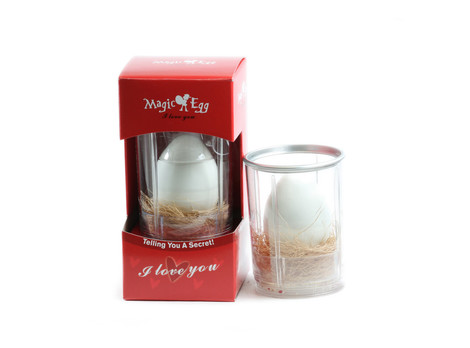 Magic Egg Produktbild